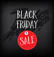 Black friday poster and background vector image