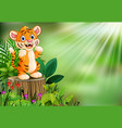 cartoon of tiger standing on tree stump with green vector image vector image