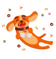cute funny dog is jumping and flying from the dog vector image vector image