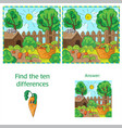 find differences between the two images carrots in vector image vector image