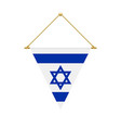 israeli triangle flag hanging vector image
