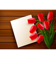 red tulip card vector image vector image