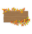wooden sign with autumn tree branch vector image vector image