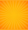 yellow sunburst background vector image vector image