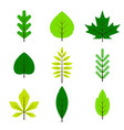 different green leaves set in flat style isolated vector image vector image