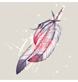 eagle feathers with watercolor splash vector image