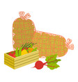 harvesting products vegetables in case vector image vector image