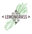 herbal tea ingredient lemongrass isolated icon vector image