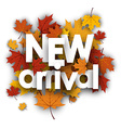 New arrival poster with maple leaves vector image vector image