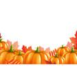 pumpkins border vector image