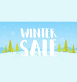 winter sale words on beautiful chrismas flat vector image vector image
