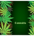 cannabis hemp background vector image vector image