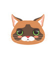 cute cat head cartoon animal character vector image