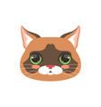 cute cat head cartoon animal character vector image vector image
