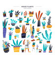 house plants color hand drawn set vector image vector image