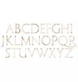 Modern Roman Classic Alphabet vector image vector image