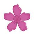 rustic floral design vector image vector image