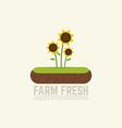 Soil flat emblem vector image vector image