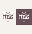 texas state textured vintage t-shirt and vector image vector image
