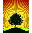 tree on shine background vector image