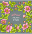 wild rose flowers frame vector image vector image