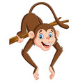 cartoon funny monkey on a tree branch vector image vector image