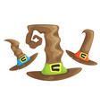 cartoon vintage tall witch hat set vector image vector image