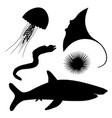 dangerous marine life vector image
