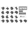 Dog breeds Shepherd dog set icon Flat style vector image vector image