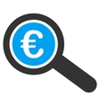 Euro Financial Audit Flat Icon vector image vector image