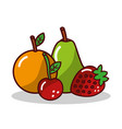 fruit orange pear strawberry cherry vector image vector image