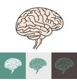 human brain mind vector image vector image