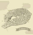 salmon fillet hand drawn vector image vector image