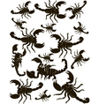 Set Scorpions Silhouette vector image vector image
