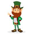 smiling cartoon character leprechaun with green vector image