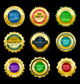gold premium sale badges set elements vector image