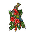 parrot ara embroidery patch with tropical flowers vector image vector image
