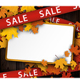 Wooden sale background with maple leaves vector image vector image