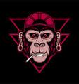 chimpanzee cool vector image vector image