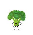 cute broccoli character cartoon mascot vegetable vector image