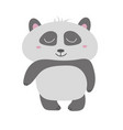 cute panda bear animal vector image