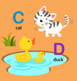 isolated alphabet letter c-cat d-duck vector image vector image
