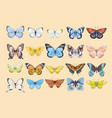 watercolor butterfly set vector image vector image