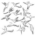 colibri set 01 vector image