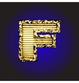 Golden Figure vector image vector image