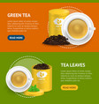 realistic detailed 3d green tea banner horizontal vector image vector image