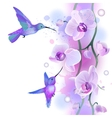 Seamless ornament with orchids and humming birds vector image vector image