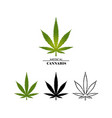 set different logo marijuana leaves isolated on vector image vector image