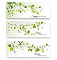 three spring nature banners with blossom of vector image