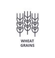 wheat grains line icon outline sign linear vector image vector image